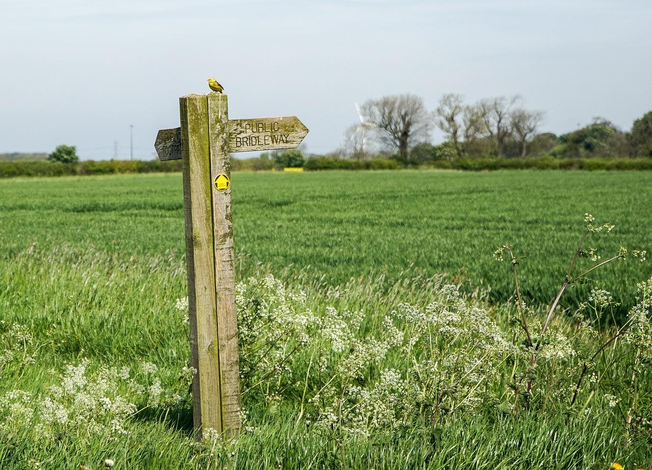 signpost-1427069_1280